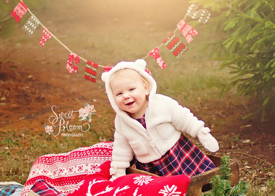 cincinnati ohio christmas mini sessions castaldi 1.jpg