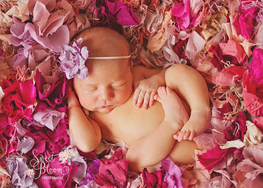 cincinnati ohio newborn photographer lexi 1.jpg