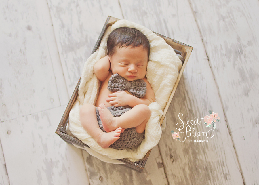 cincinnati ohio newborn photography studio beckett 4.jpg