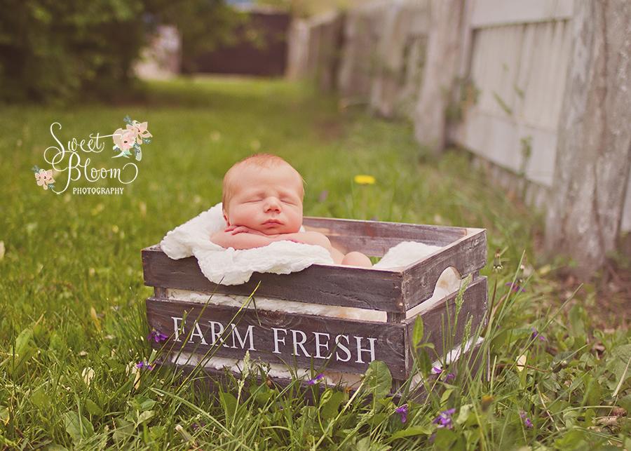 cincinnati ohio newborn photography studio carter 3.jpg