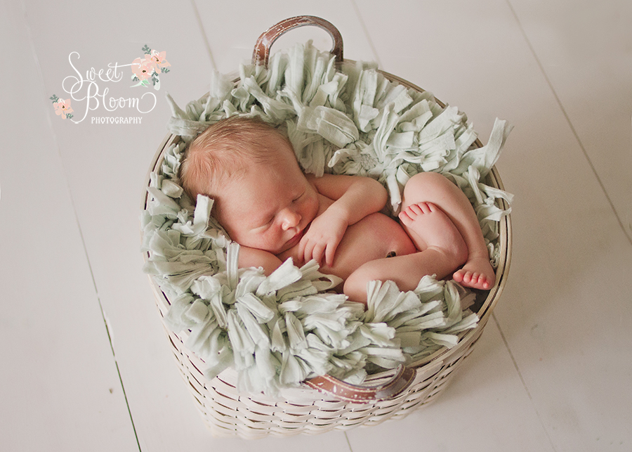 cincinnati ohio newborn photography studio cooper 3.jpg