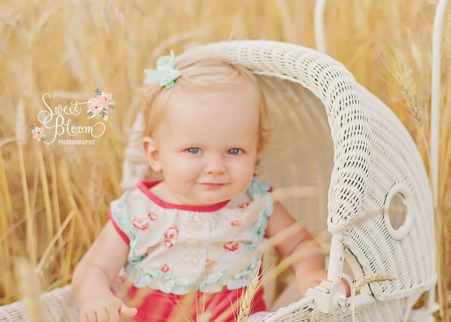 dayton ohio baby photographer lucy 1 year.jpg