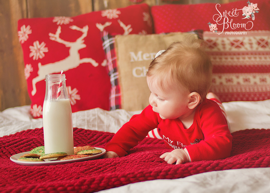 dayton ohio christmas mini sessions everly 3.jpg