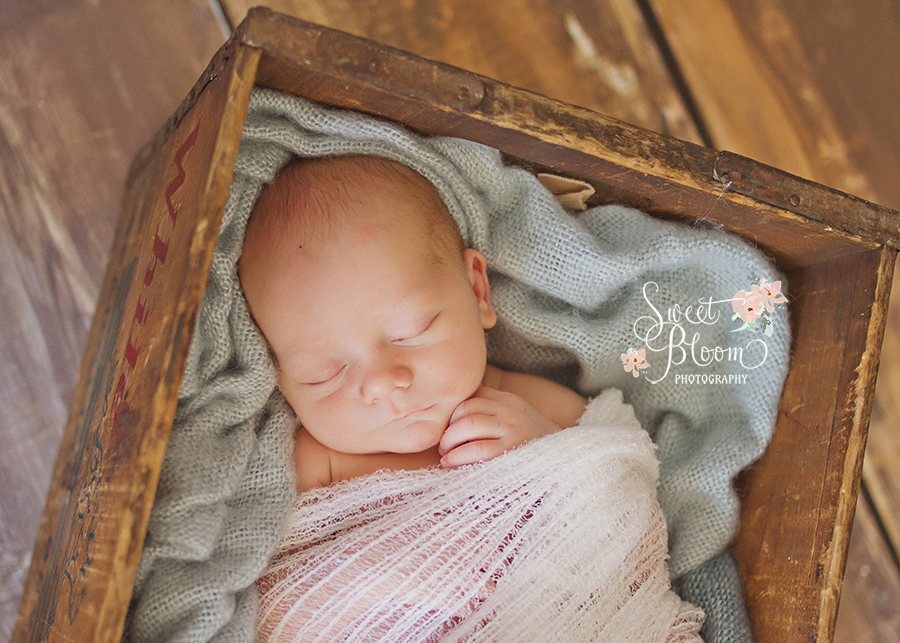 springboro ohio newborn photographer ellis.jpg