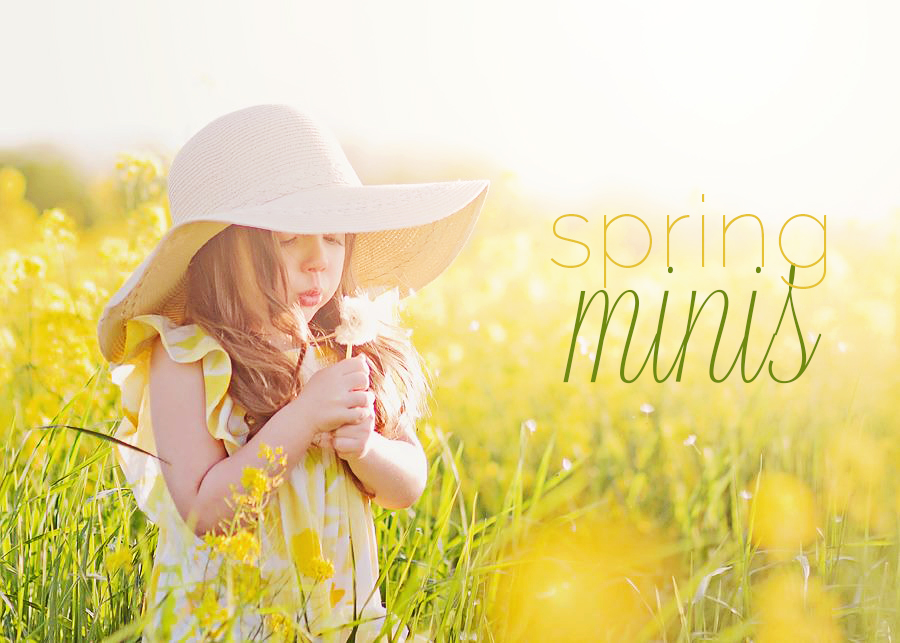 Dayton Ohio Spring Mini Sessions Photographer | Sweet Bloom Photography | www.sweetbloomphotography.com