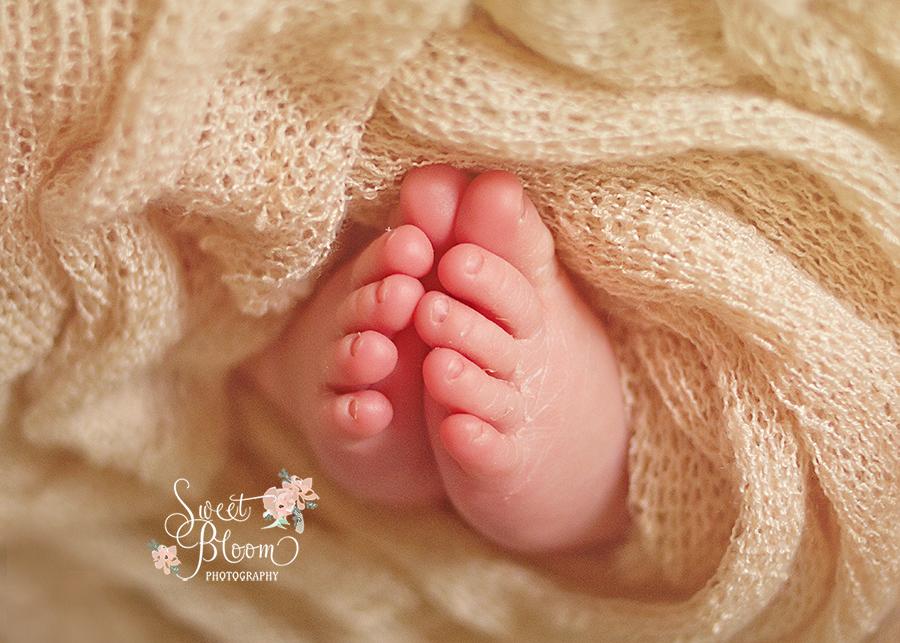 Cincinnati Ohio Newborn Photography Studio   Sweet Bloom Photography   www.sweetbloomphotography.com