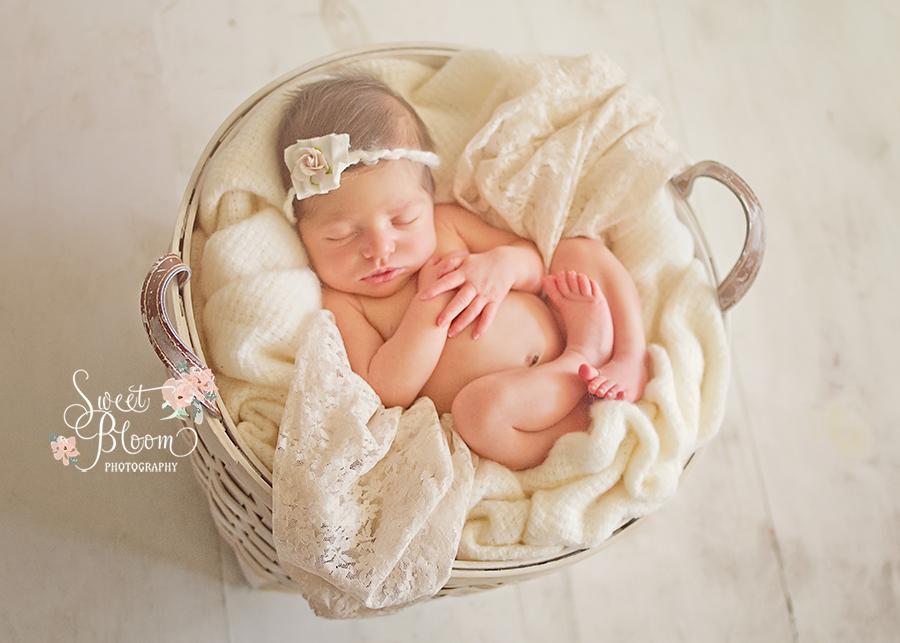 Dayton Ohio Newborn Photographer   Sweet Bloom Photography   www.sweetbloomphotography.com