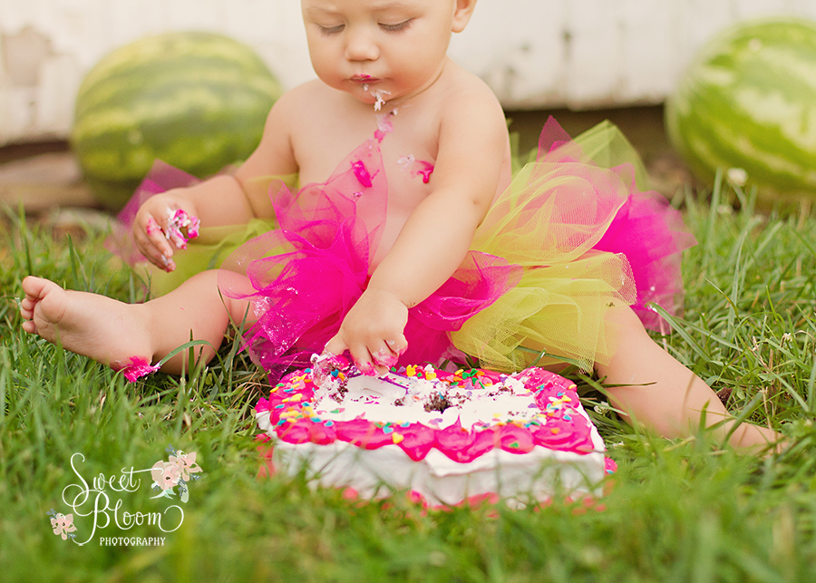 Dayton Ohio Birthday Cake Smash Sessions | Sweet Bloom Photography | www.sweetbloomphotography.com