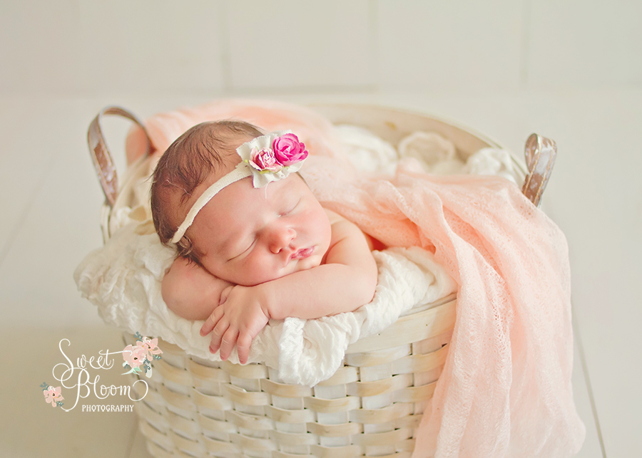 Dayton Ohio Newborn Photography Studio | Sweet Bloom Photography | www.sweetbloomphotography.com