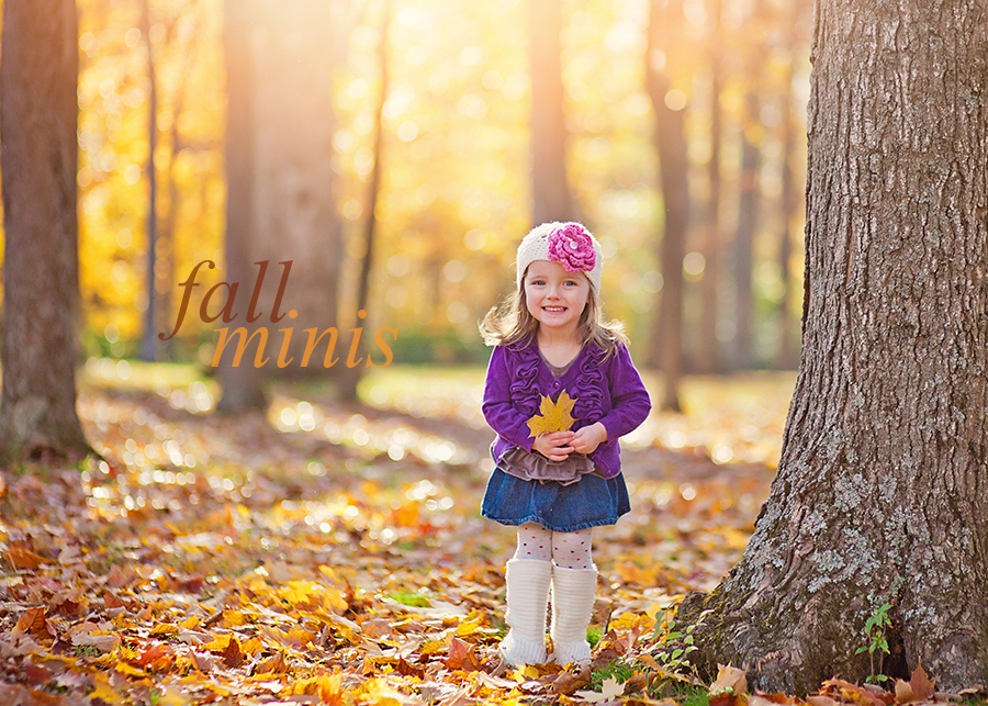 Dayton Ohio Fall Mini Sessions 2015 | Sweet Bloom Photography | www.sweetbloomphotography.com
