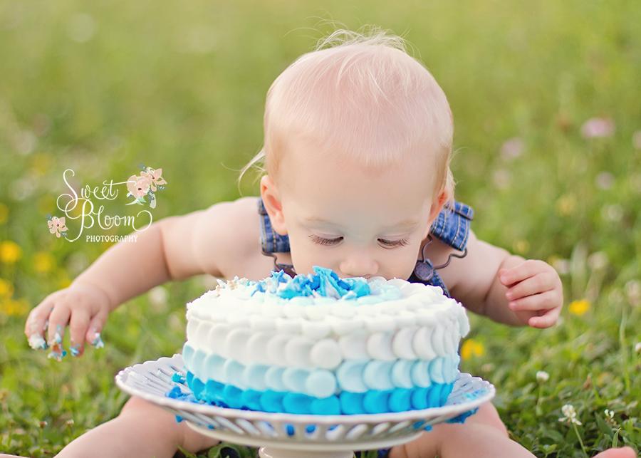 Dayton Ohio Birthday Cake Smash Photography Session | Sweet Bloom Photography | www.sweetbloomphotography.com