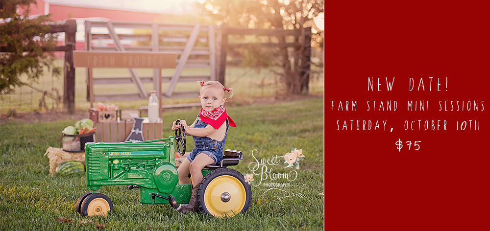 Farm Stand Mini Sessions | Sweet Bloom Photography | www.sweetbloomphotography.com