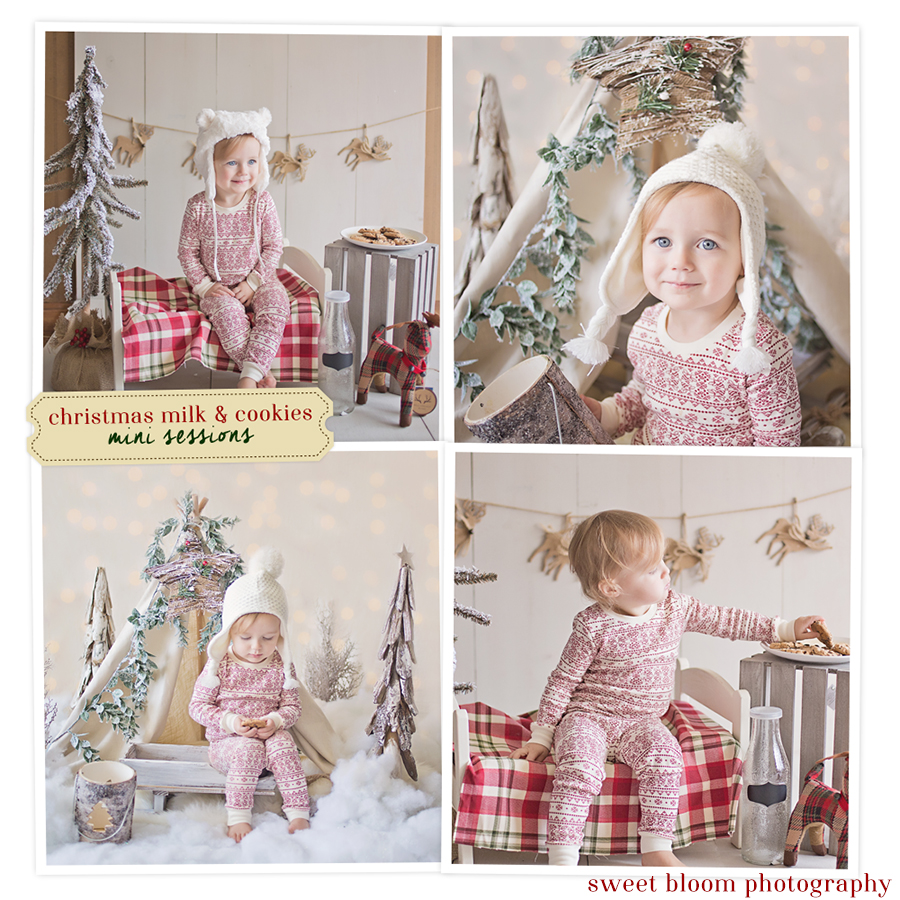 Dayton Ohio Christmas Mini Sessions | Sweet Bloom Photography | www.sweetbloomphotography.com
