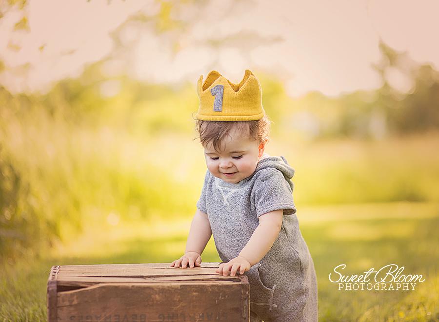 Springboro Ohio Newborn Photographer