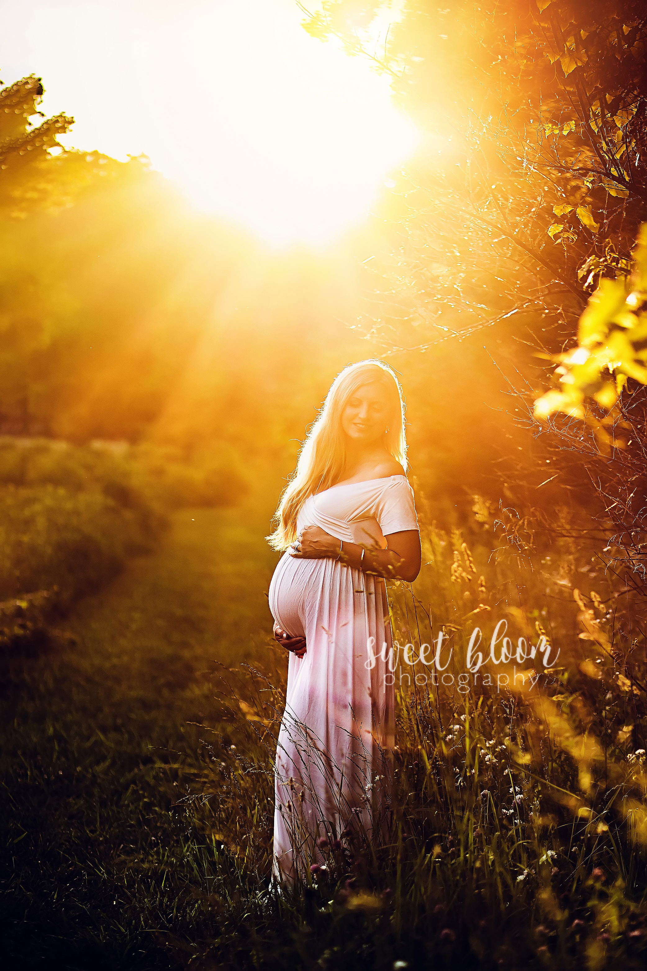 Lexington KY Maternity Photographer Session at Sunset.jpg