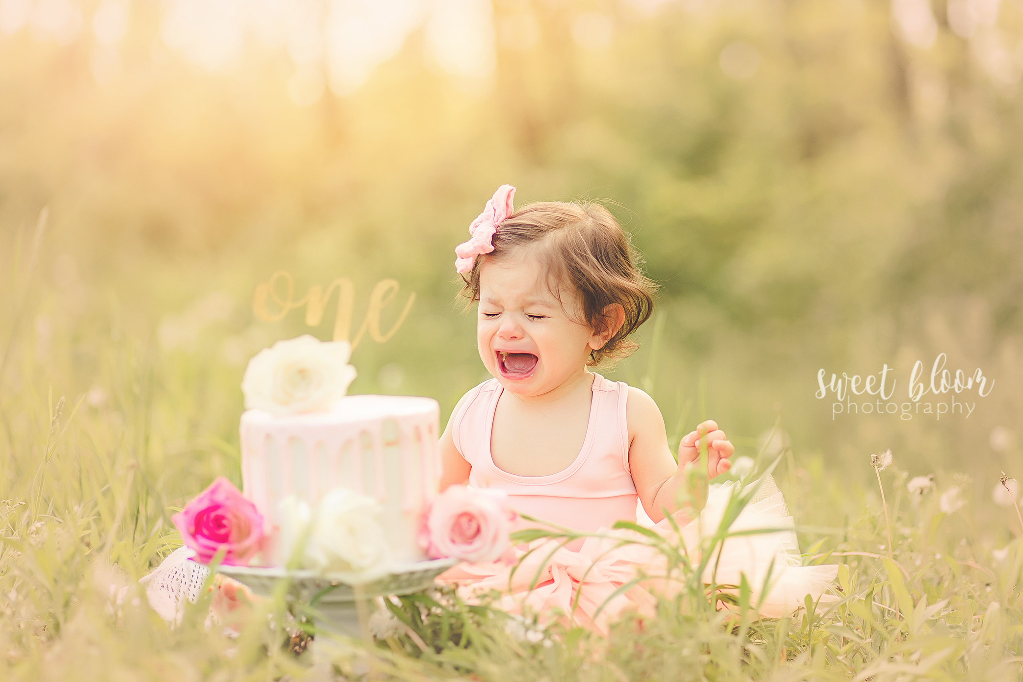 Lexington KY Baby Photographer Cake Smash.jpg
