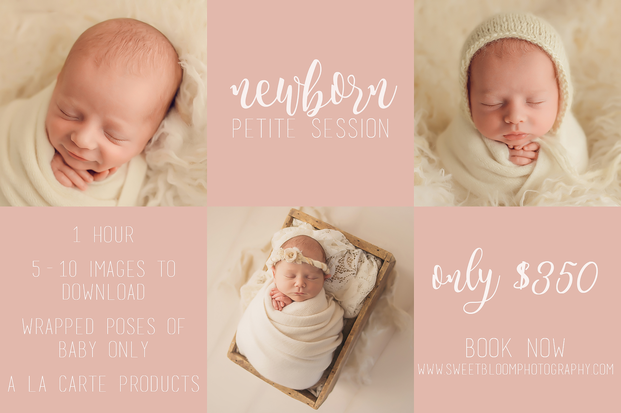 lexington ky mini newborn session.jpg