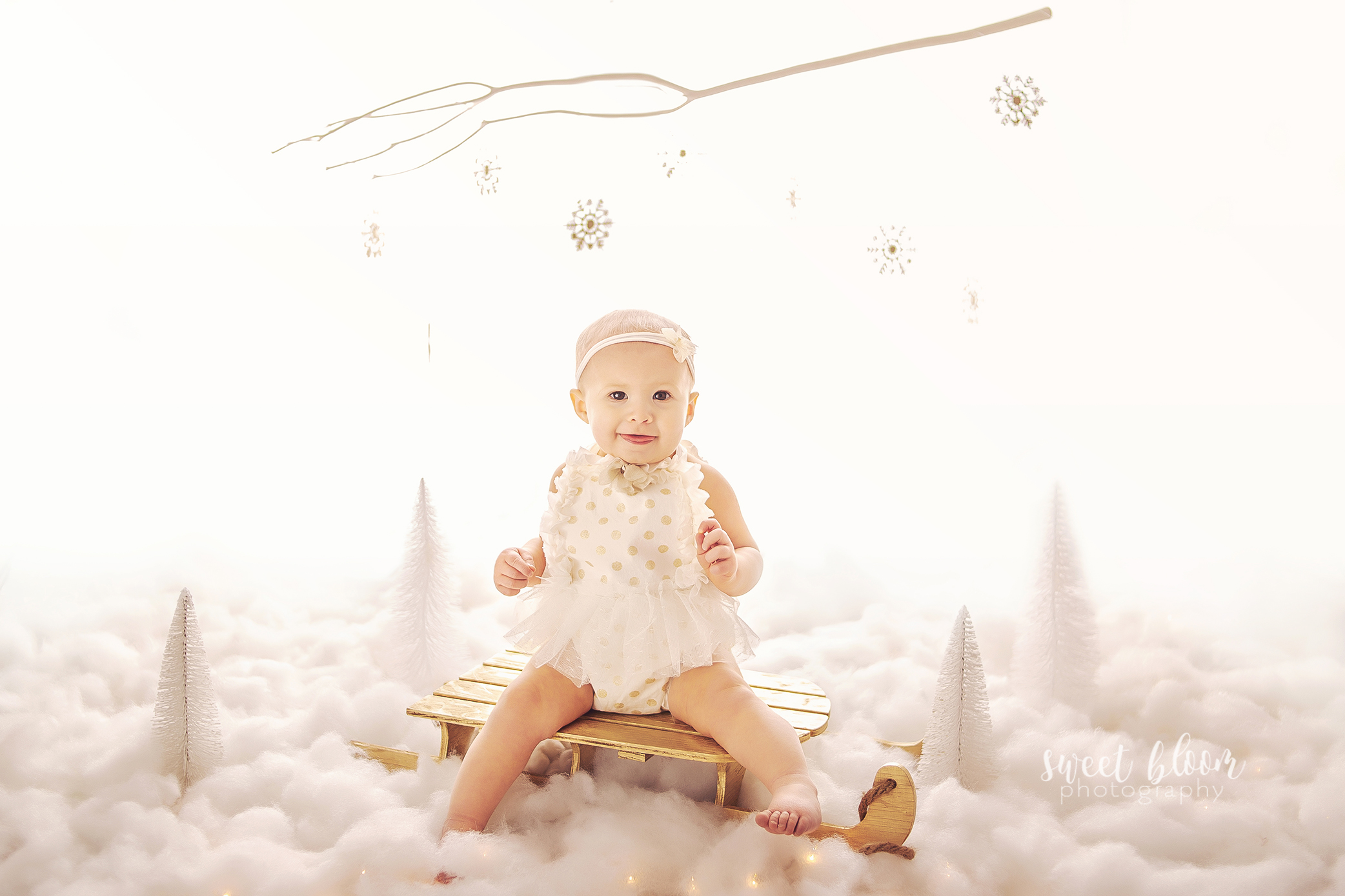 Kentucky Baby Photographer Winter Onederland Wonderland.jpg