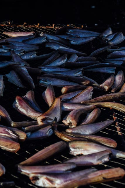drying fish on truck.jpg
