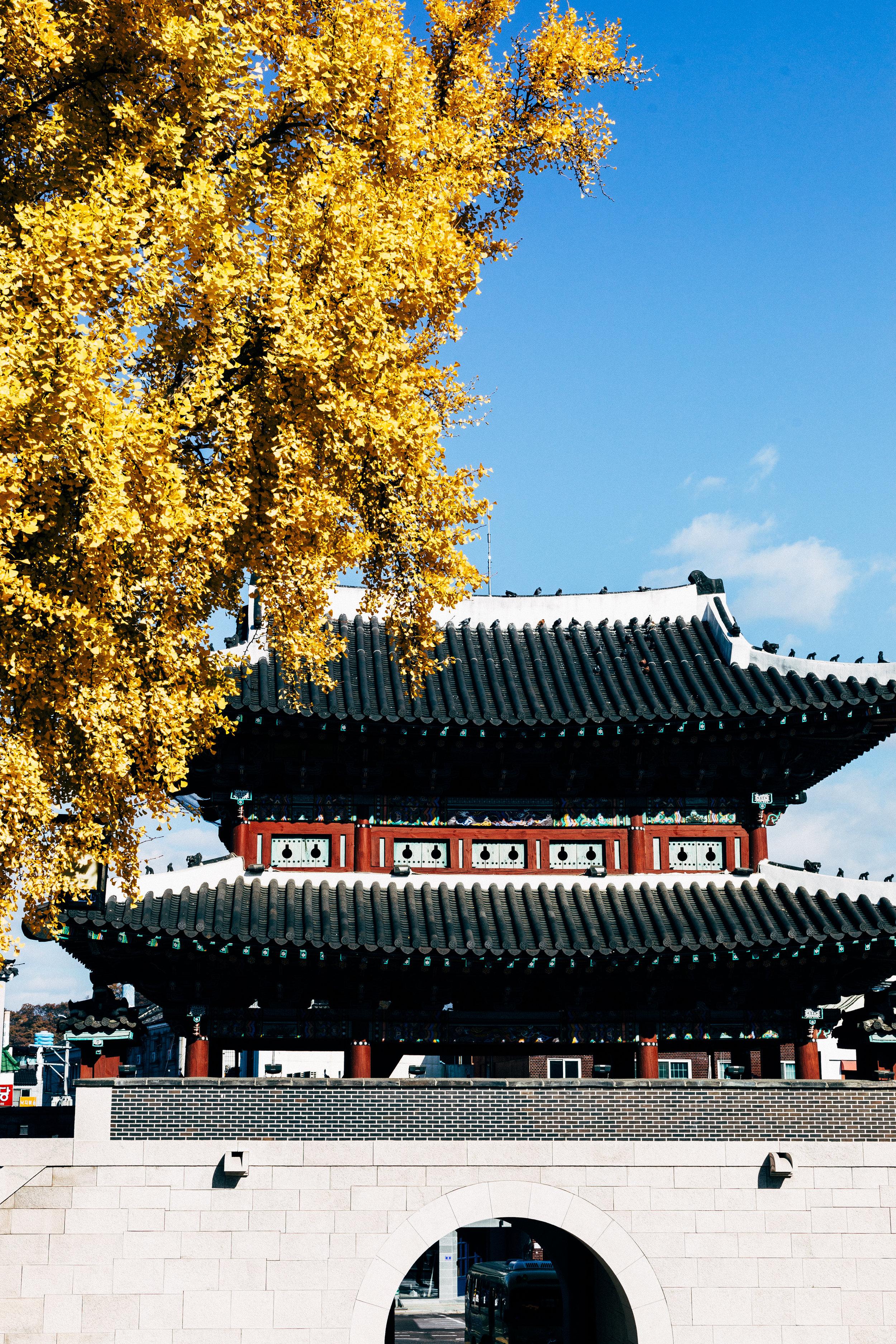 Jinju Castle.jpg