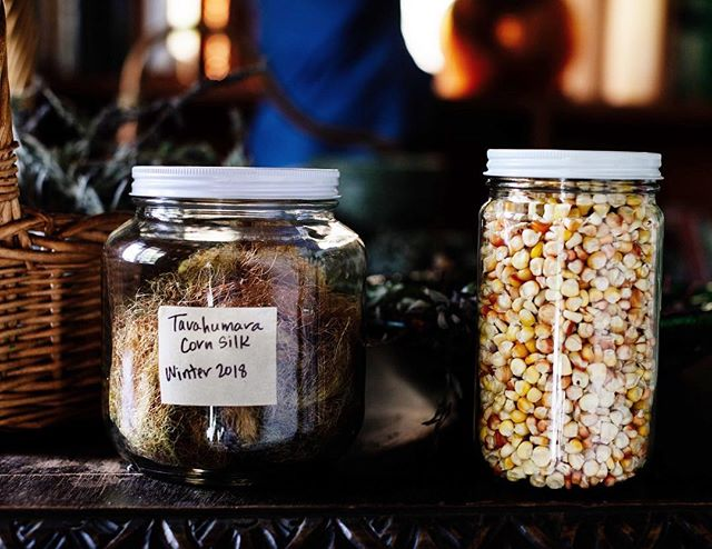 Love things in jars, especially when grown with a lot of love 💕Experimenting with a corn miso made from Tarahumara heritage corn grown by @naturalresources on @flamingo_estate, so let's see in a few months ⌛️ Also came home with this jar of corn silk and looking for all information on the best way to use it, the best times to harvest, so any advice from the HK clan welcome! 🙏🏼😘