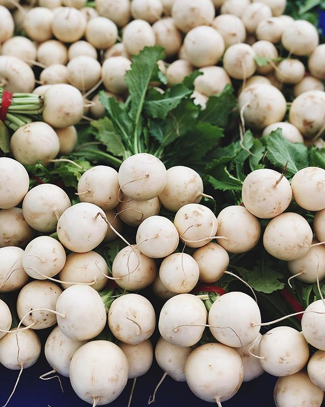 Ever since my @cookforsyria dinner in Hong Kong (with the inspiring @cardamom.and.tea @dervlalouli @houseofmadisonhk), I've been dreaming of pickled Syrian turnips 🤓❤️ Jars of these beauties in brine to come @baroolosangeles ✌🏼