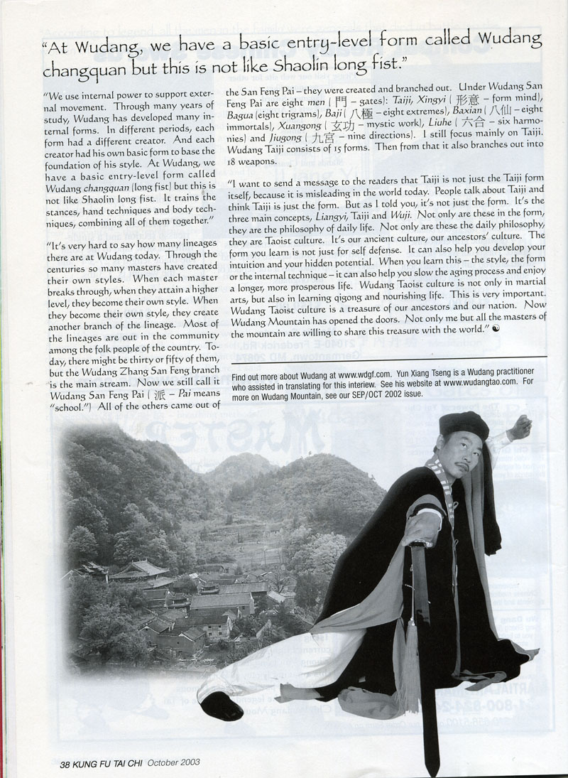 The Chief Priest of Wudang Mountain 9