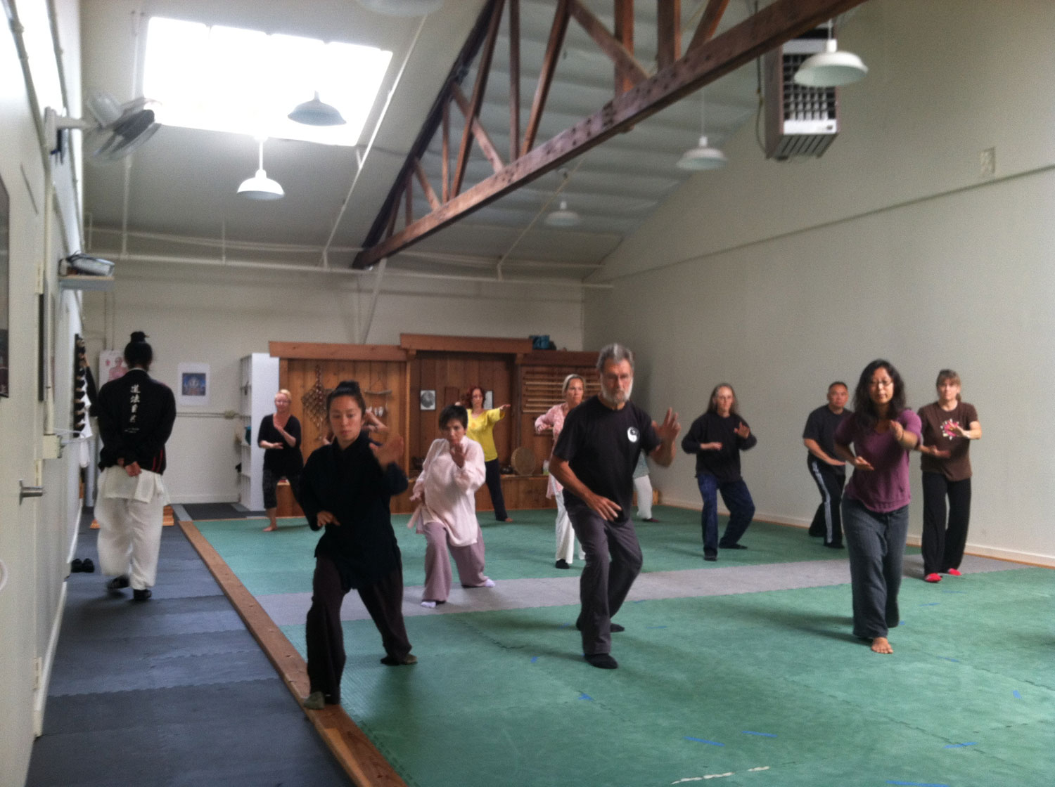 Lindsey is leading the Qigong for of Snake