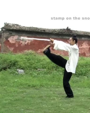 Wudang Tai Chi Sword4