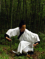 Wudang TaiYi WuXing Quan1