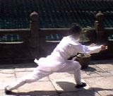 Long Hua Quan 1