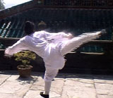 Long Hua Quan