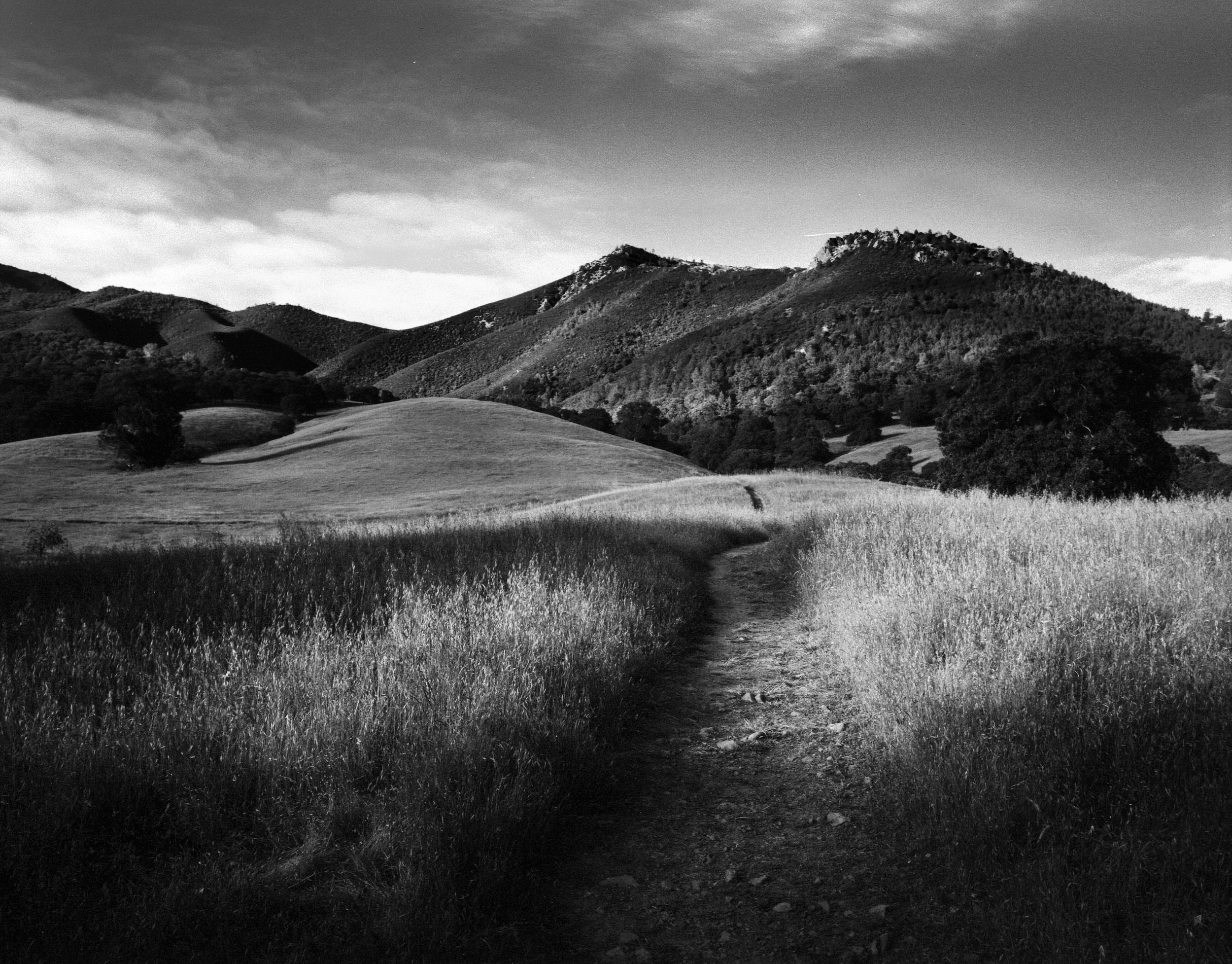 Path to Mt Zion, Mt Diablo 2011. I ditched my morning classes to take advantage of the morning light along the foothills of Mt Diablo. At this time my Pentax 6x7 was new to me and I was still learning with it. I used a deep orange filter for this shot and ended up under exposing it by ~1.5 stops but saved the shadow detail digitally after scanning the frame.