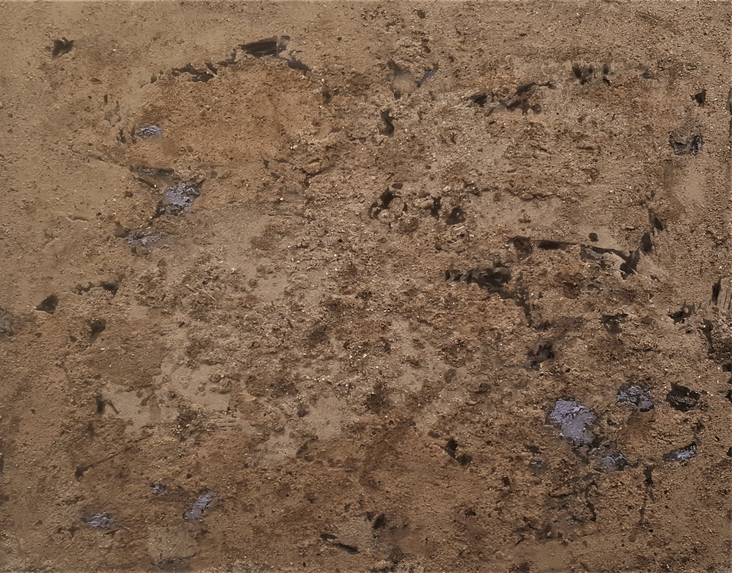 Trace 1    oil, shellac, ash, and lacquer  20''x16''
