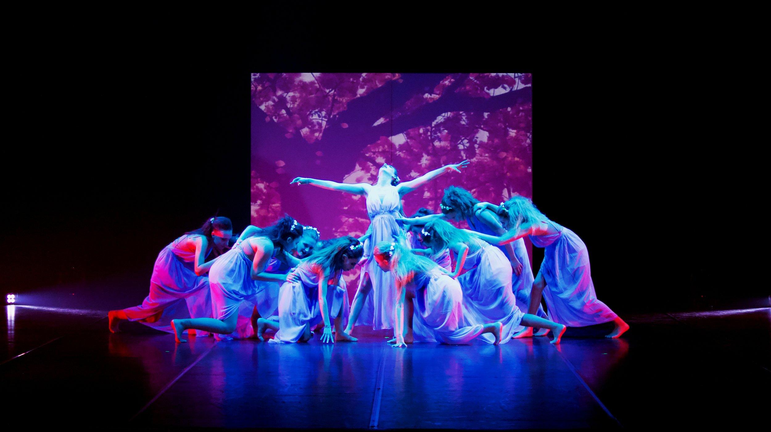 pensieri sentimenti movimenti danza - jAZZ DANCE, HIP HOP, VIDEO DANCE, VIDEO DANCE SUI TACCHI, DANZA CLASSICA, BROADWAY DANCE, LYRICAL JAZZ, PRE DANCE, JAZZ TECNICO A PARTIRE DAI 4 ANNI
