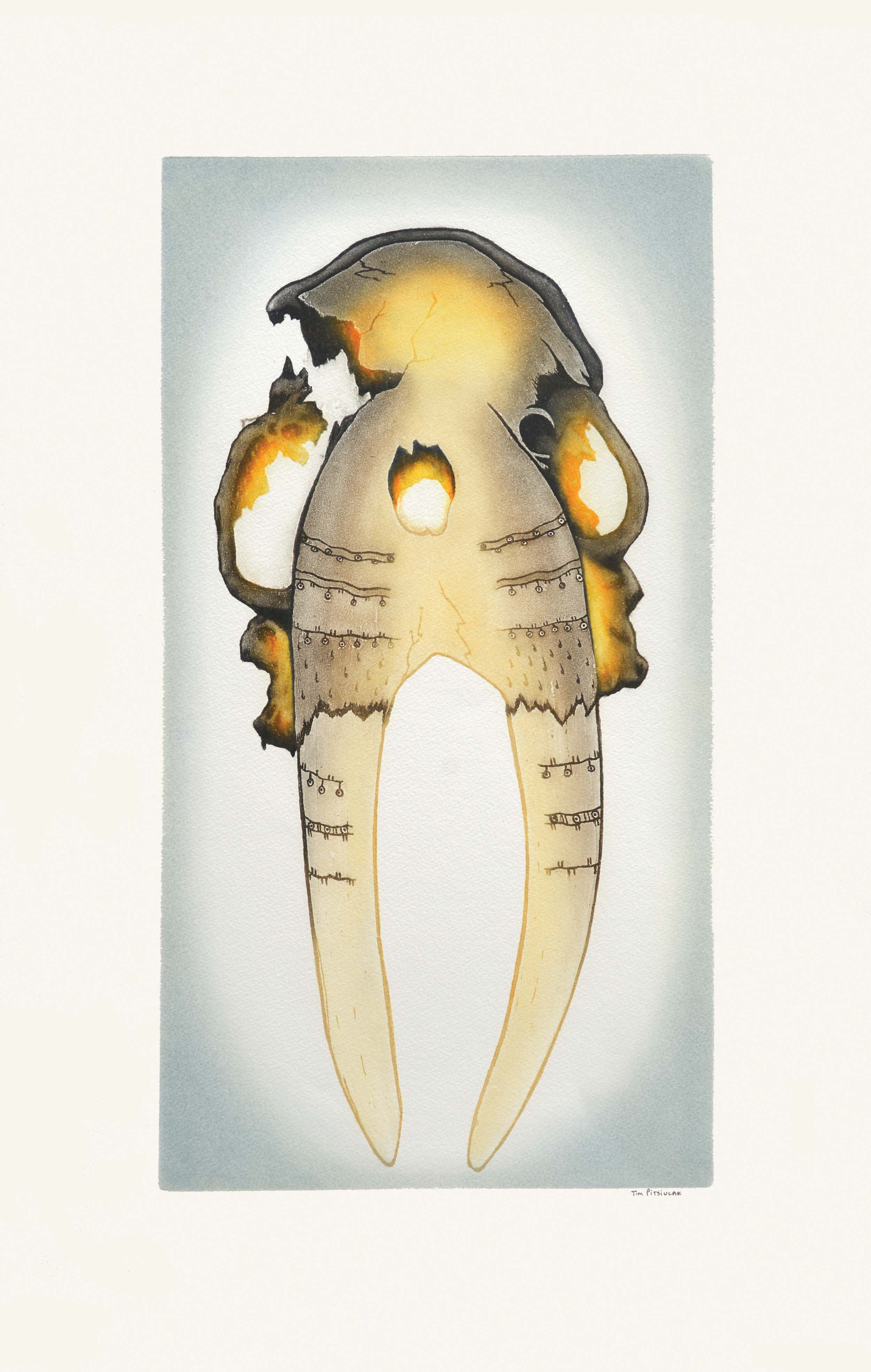 TIM PITSIULAK  16-08  Ancient Walrus Skull   Etching & Aquatint  Paper: Arches White  Printer: Studio PM  75 x 47 cm  $ 800