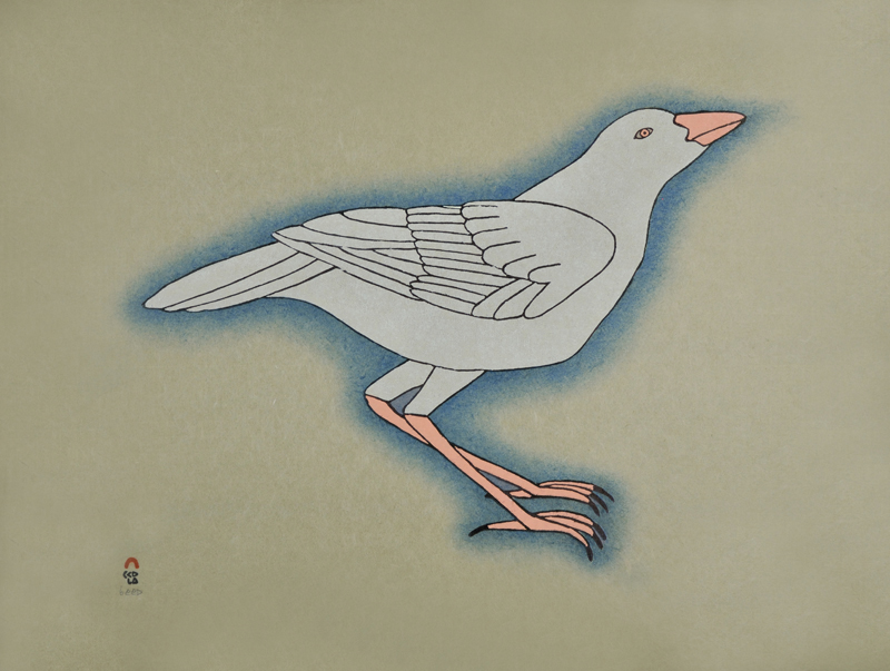 Qavavau Manumie  WHITE RAVEN Stonecut & Stencil 2015 47.2 x 61 cm $800.00 CDN Released in the 2015 collection Dorset ID#: 15-18