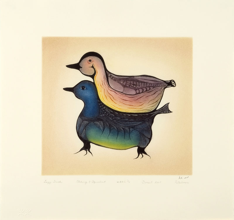 Pitaloosie Saila  LAZY DUCK Etching & Aquatint 2009 53.5 x 57 cm $700.00 CDN Released in the 2009 collection Dorset ID#: 09-32