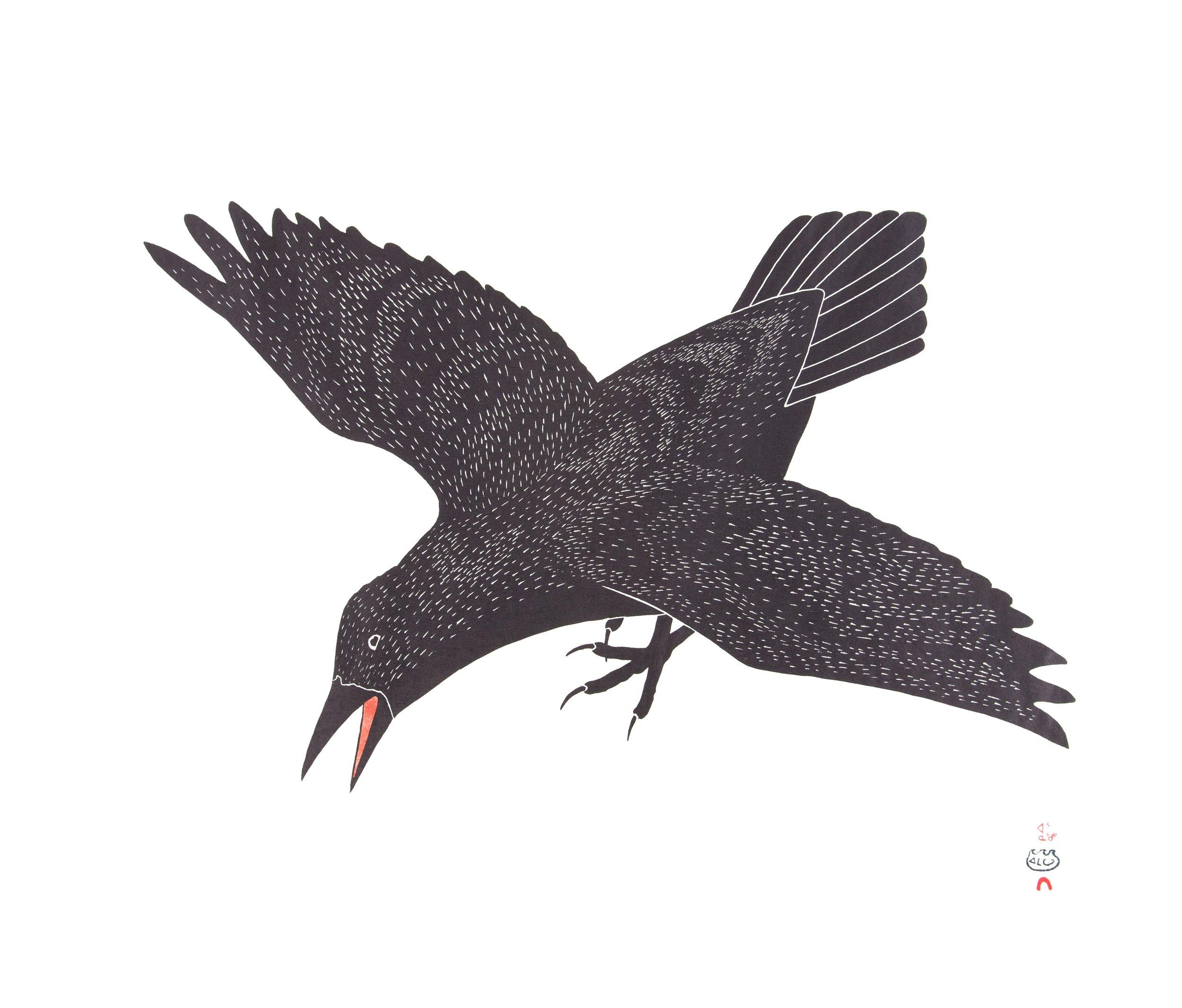 raven (1 of 1).jpeg
