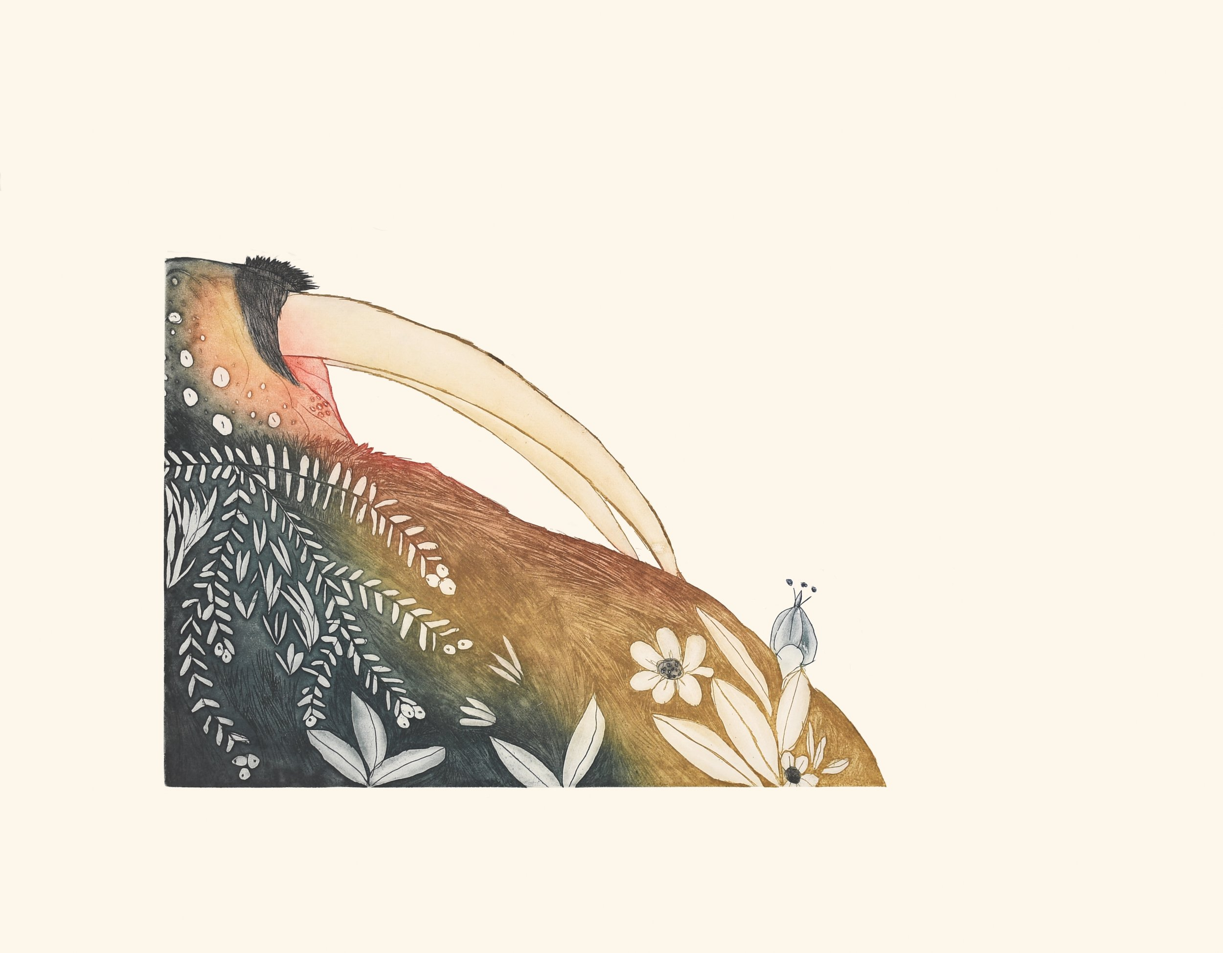 NINGIUKULU TEEVEE  6. Basking Walrus  Etching & Aquatint  Paper: Arches White  Printer: Studio PM  57.5 x 72 cm  $ 800