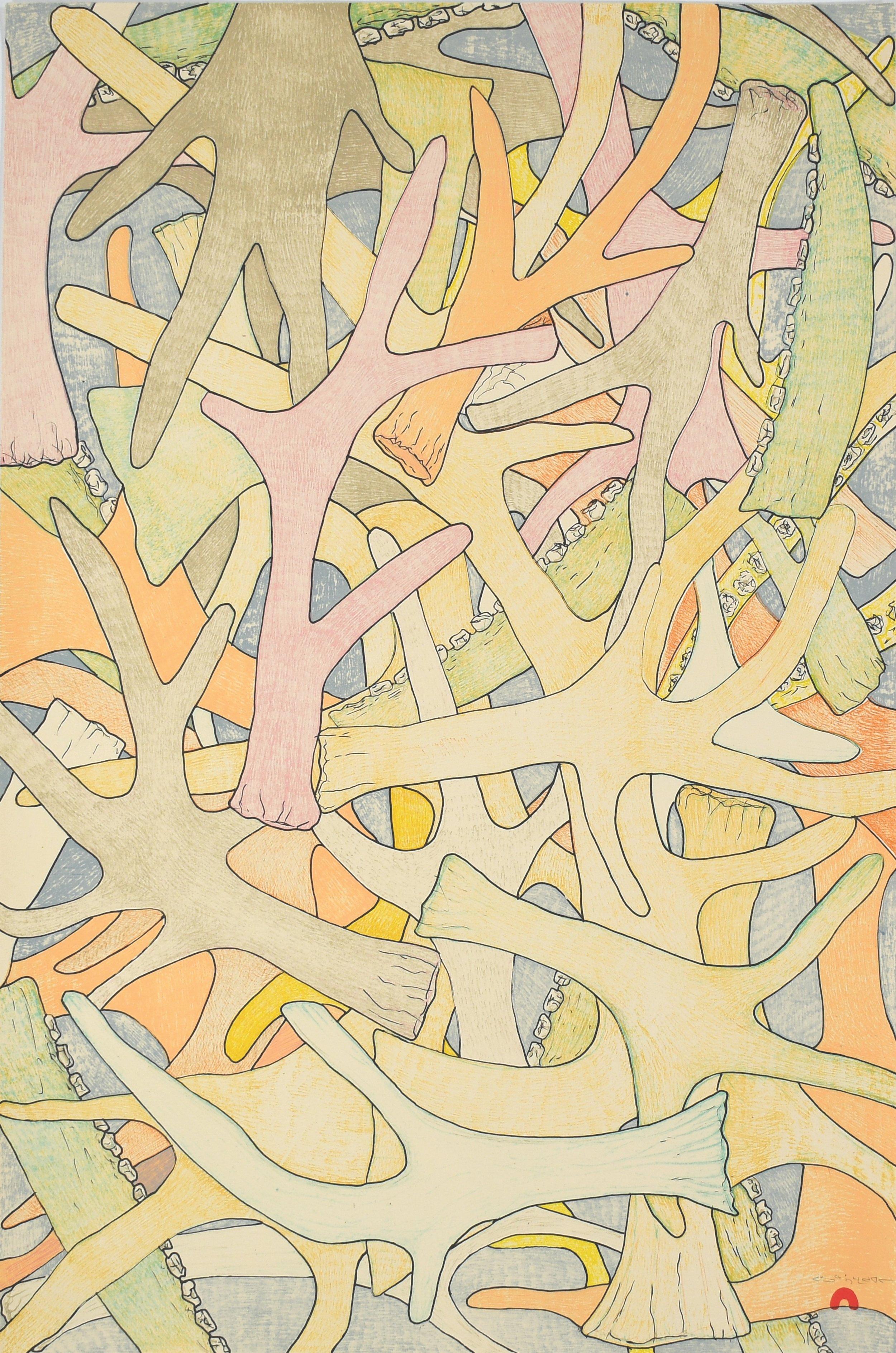 PADLOO SAMAYUALIE  19. Antlers & Bones  Lithograph  Paper: Arches Cover Cream  Printer: Niveaksie Quvianaqtuliaq  58.5 x 38 cm  $ 600