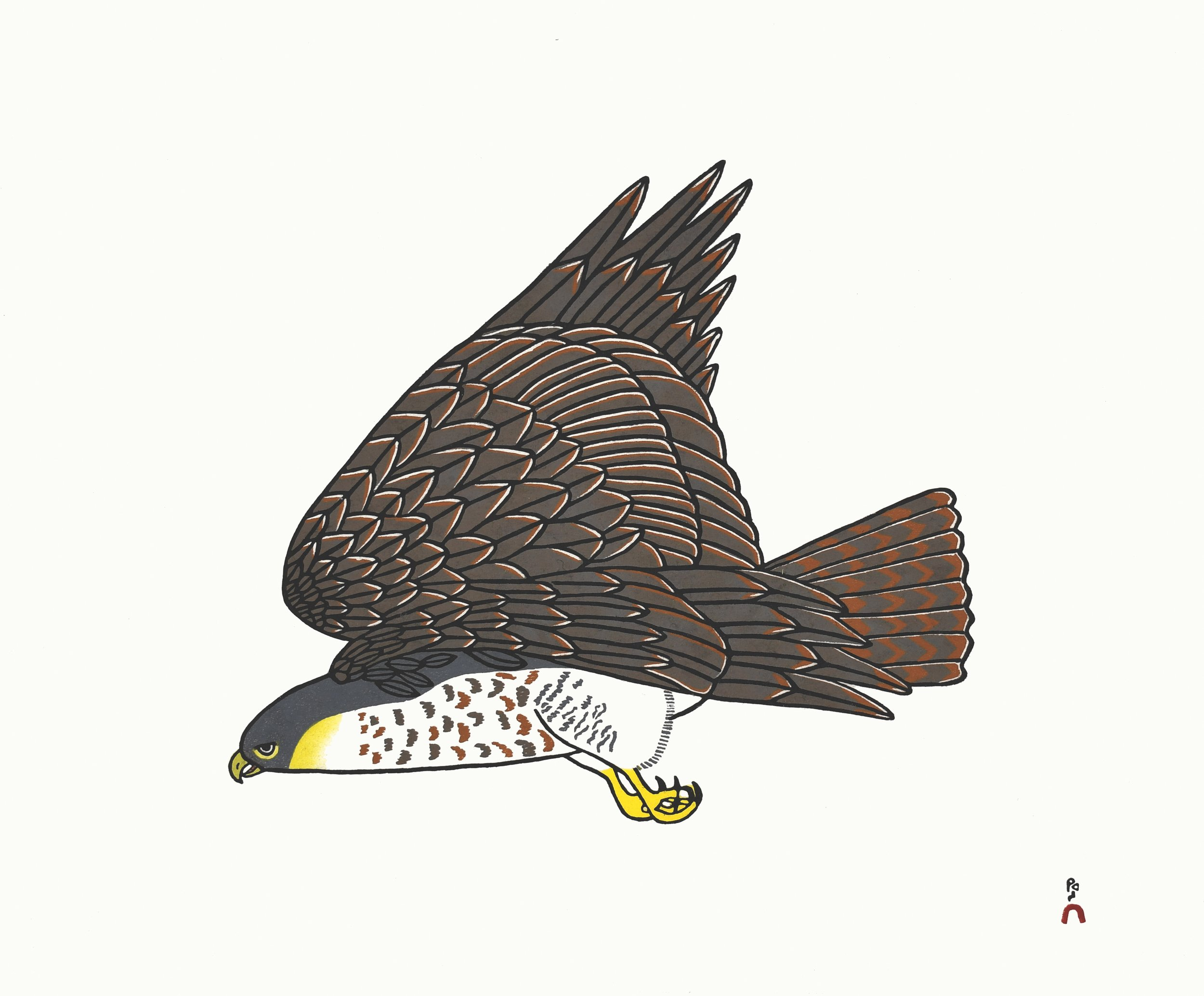 PAUOJOUNGIE SAGGIAK   1. Peregrine Falcon   Stonecut  Paper: Kizuki Kozo White  Printer: Qiatsuq Niviaqsi  45.8 x 55.5 cm  $ 500