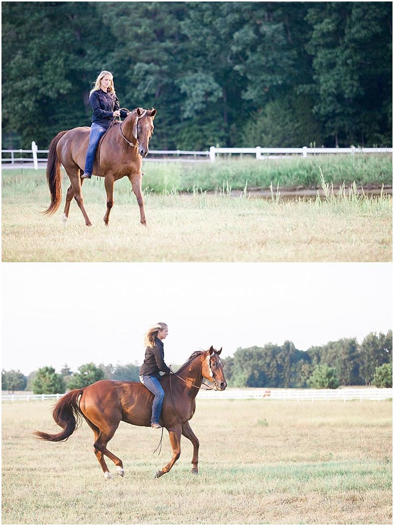 holly_horses_virginia_8.jpg