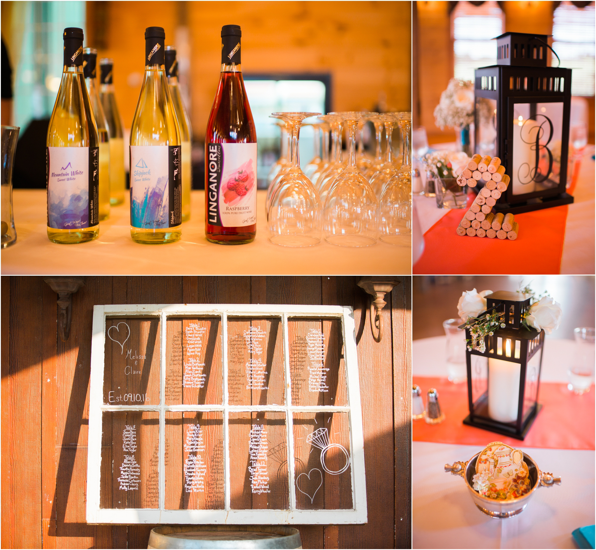 bethany-grace-photography-linganore-winecellars-same-sex-lgbtq-pink-blue-winery-outdoor-wedding-21.JPG