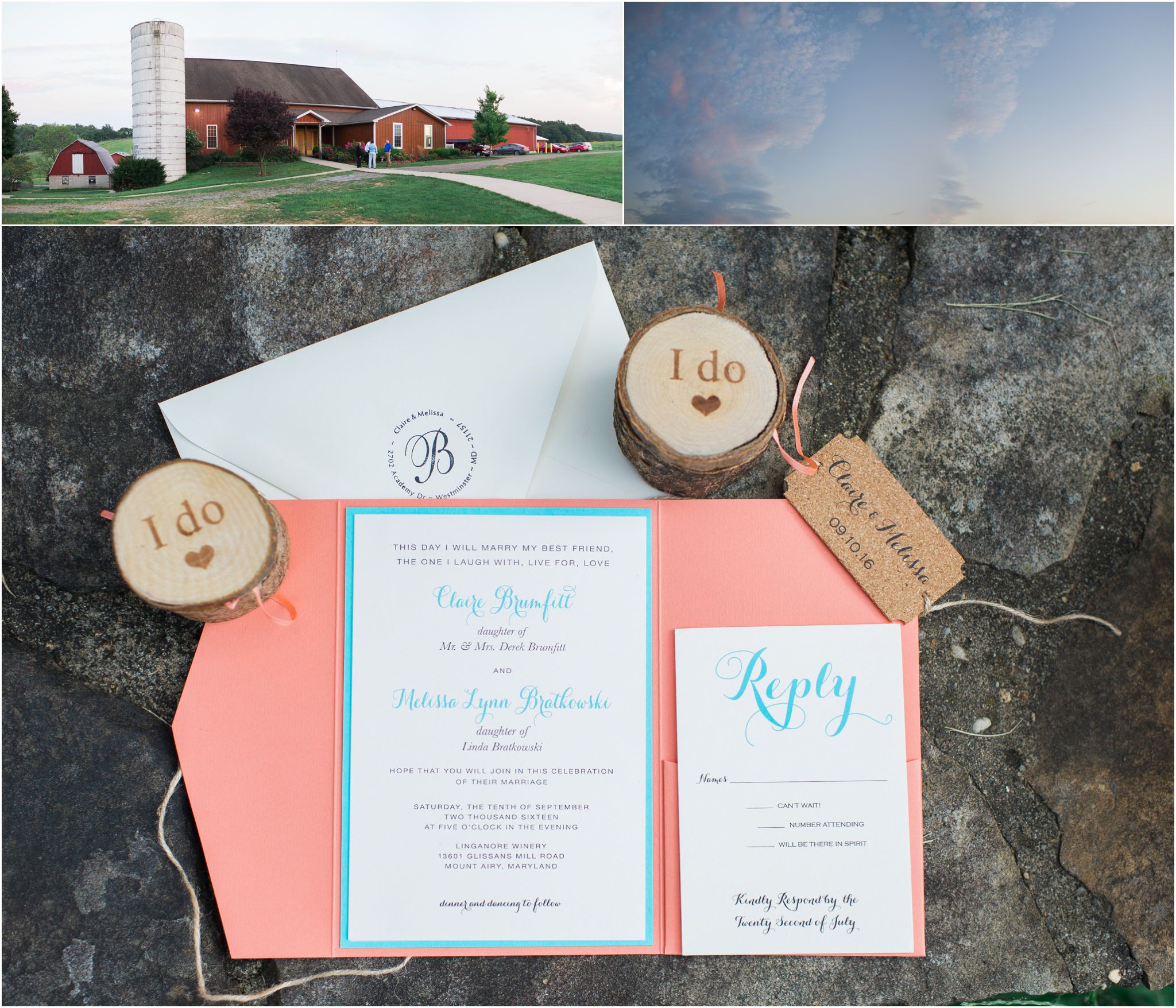 bethany-grace-photography-linganore-winecellars-same-sex-lgbtq-pink-blue-winery-outdoor-wedding-24.JPG