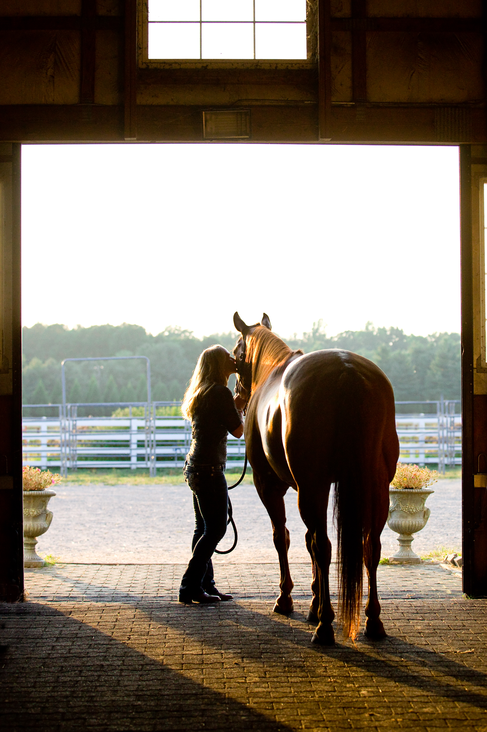bethanygracephoto-equine-photography-maryland-virginia-31.JPG