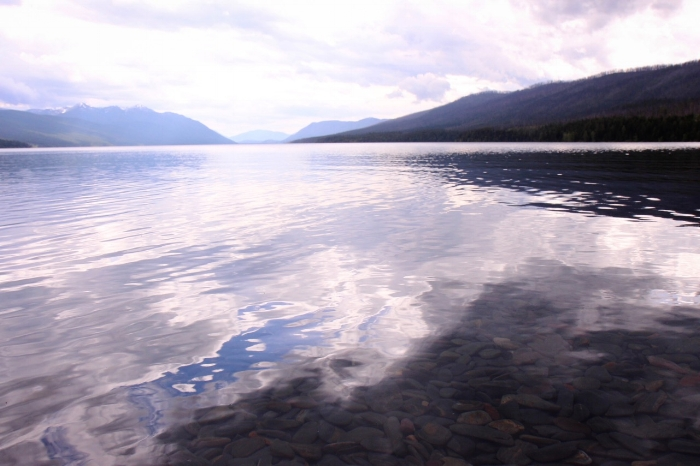 Waterscape Nature - Holli Z Photography - 8.jpg