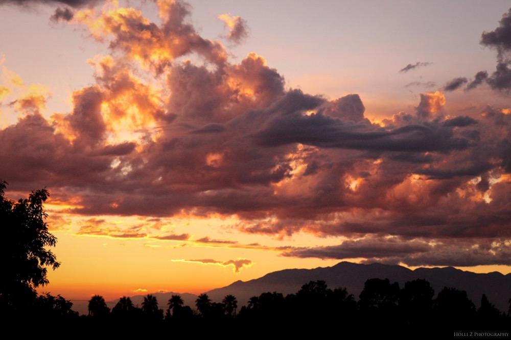 Magic Hour Nature - Holli Z Photography - 4.jpg