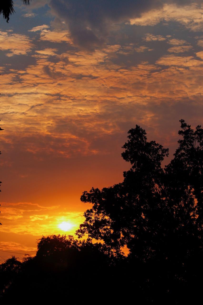Magic Hour Nature - Holli Z Photography - 12.jpg