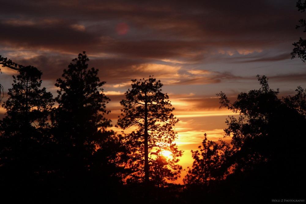 Magic Hour Nature - Holli Z Photography - 20.jpg